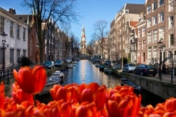 Medical Tourism Holland Novacorpus